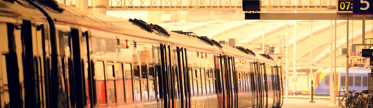Short banner train