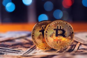 Team bitcoins and dollars pk54z76